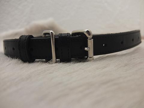 cornelian taurus by daisuke iwanaga roll belt BLACK (3)